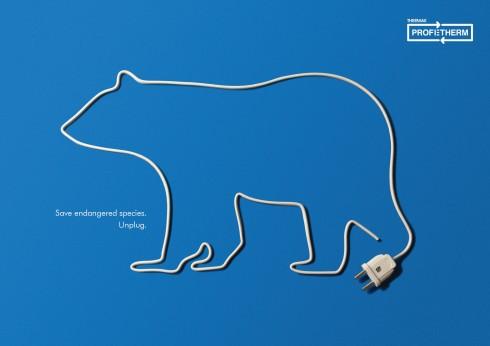 save_bear