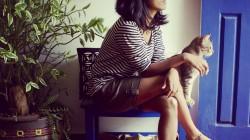 Sonali Zohra : Dangercat : Art and Graphic Design