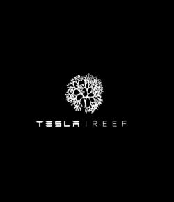'Tesla Reef' by Miami Ad School