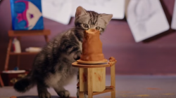 Iris and Thula for Whiskas by AlmapBBDO Brazil