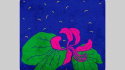 Nidheesh Bharathi : Illustrator
